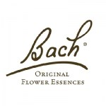 Bach Olive/Olijf 20ml